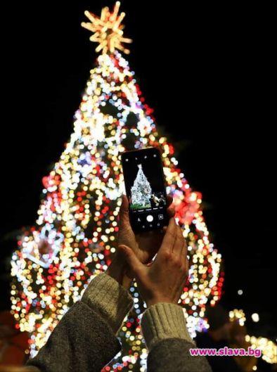 Грейна Коледната елха в София