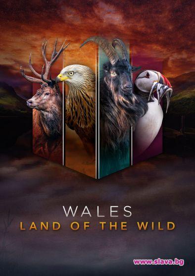 Уелс: Дивата земя тръгва по Viasat Nature