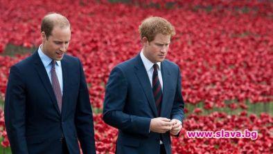 Принц Уилям е загрижен за брат си