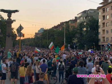 Оставка и мафия: Протестът за демокрация