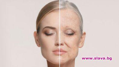 Израелски учени обърнаха процеса на стареене за...