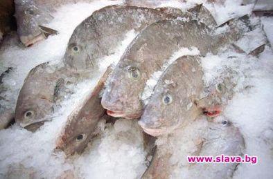 Замразена или охладена риба и колко ни удрят в...