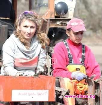 Стефани Попова (вляво) седи на трактора, който бере ягодите, за