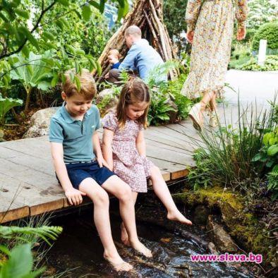 На новите снимки от профила на кралското семейство виждаме Кейт