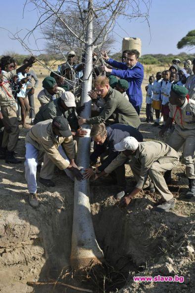 Британският принц Хари пристигна на посещение в Ботсвана, оставяйки съпругата