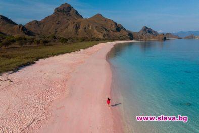 Розовият плаж (Pink Beach) е един от най-красивите в светаСнимки: