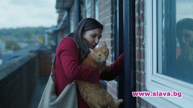 Киномания ще покаже българския филм Котка в стената на режисьорите