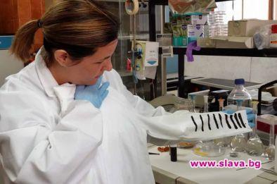 Учени от Испания и Италия са разработили нов тип тъкан,