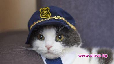 Полицейското управление на японския град Тояма назначи за един ден
