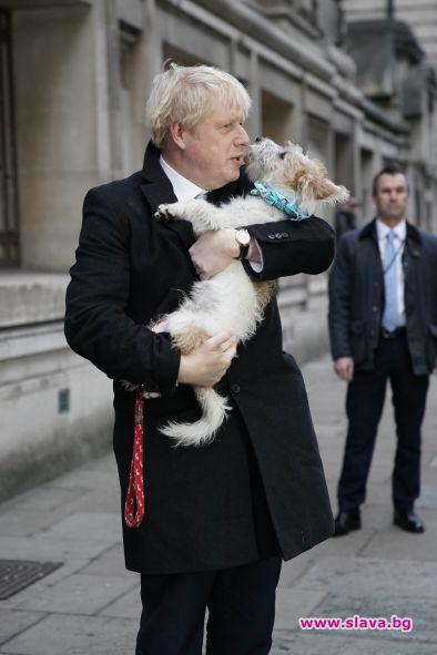 Британският премиер Борис Джонсън се оплака, че кучето му Дилин